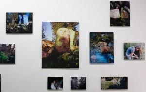 Tentoonstelling ACF | Fotoprints op aluminium