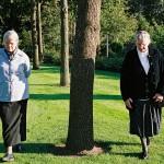 Agricultuur Nederland / Familiebedrijf Veluwe