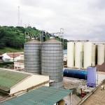 Tanzania beweries